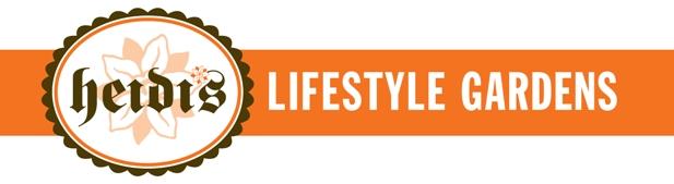 Orange_HLG_Logo_Banner