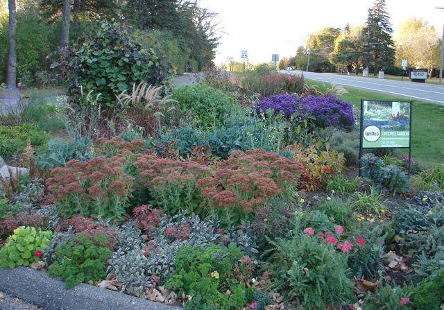 Wayzata Adopt-a-Garden