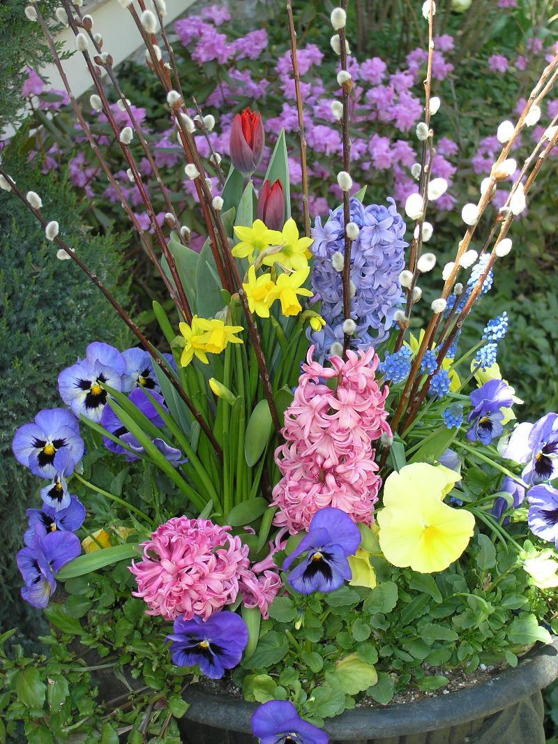 Spring_Pots_1