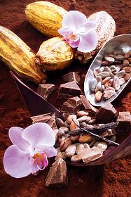 Chocolate Chocolate!