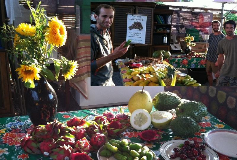 Fruit Lovers Fest