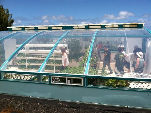 greenhouse aquaponics