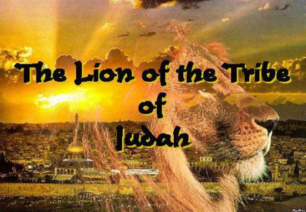 lion juda