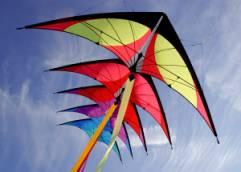 Kite photo 1