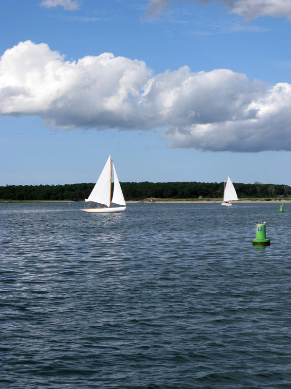 Popponesset Bay (Dawn Peterson)