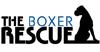 The Boxer Rescue