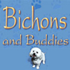 Bichons and Buddies