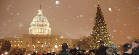 Capitol_ChristmasTree