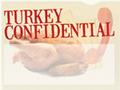 Turkey Confidential
