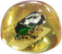 image-Free Paperweight