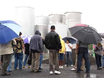Umbrella Tour at BIB