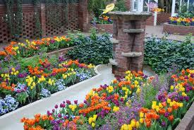 Phipps Flowers