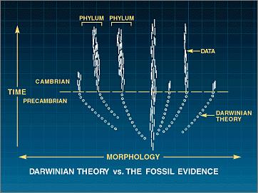 Darwin.versus.data