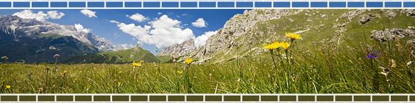 bricks_mountains.jpg