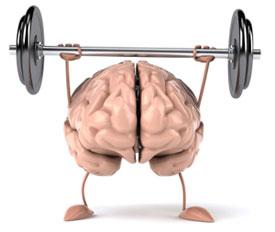 brain w/o