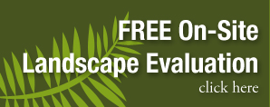 free landscape evaluation