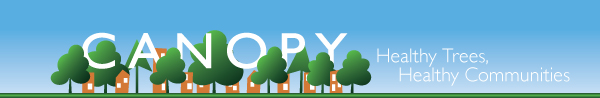 Canopy: Healthy Trees, Healthy Communities