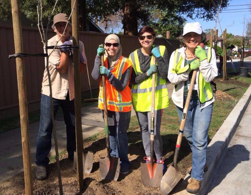 Tree Planting Buddies