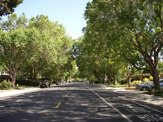 Tree-Lined Streets have real benefits to residents