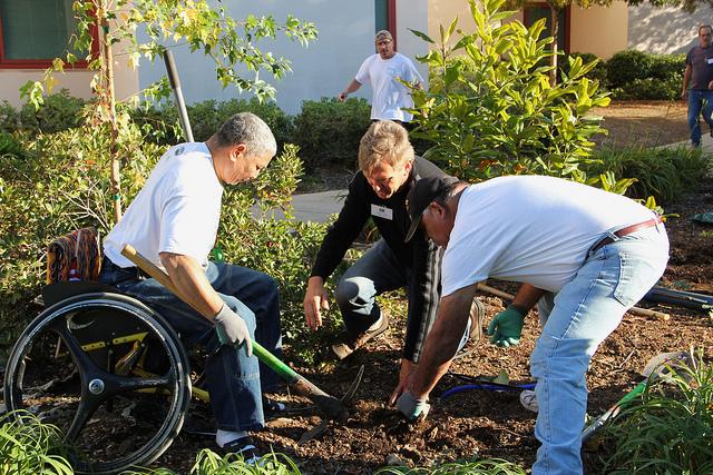 VA Tree Planting