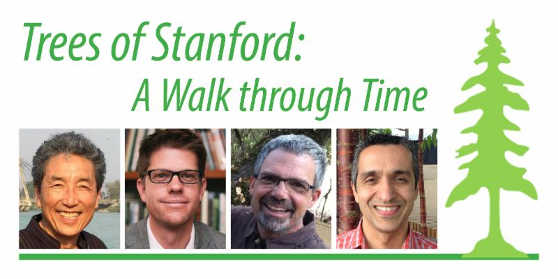 Trees of Stanford: A Walk Through Time