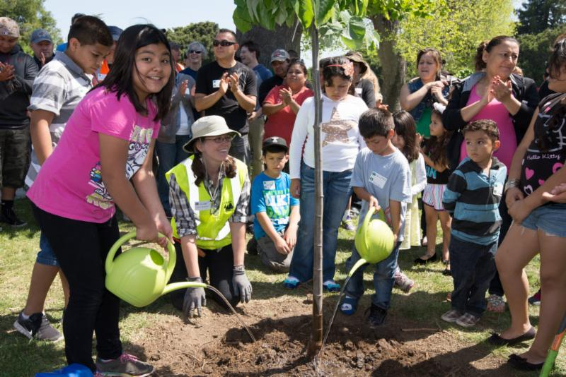 Care for trees, care for communities