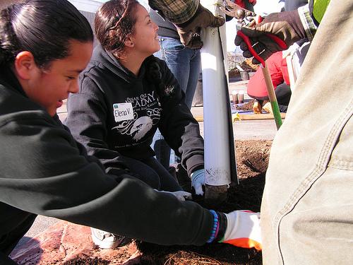 C Chavez planting Jan 26
