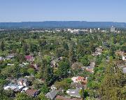 Green Palo Alto