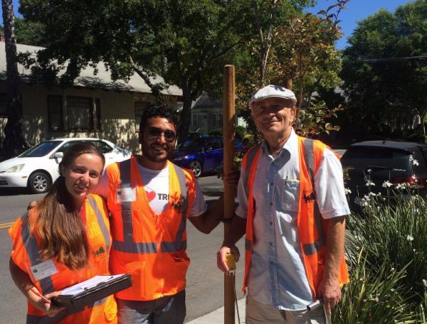 Tree survey volunteer trio