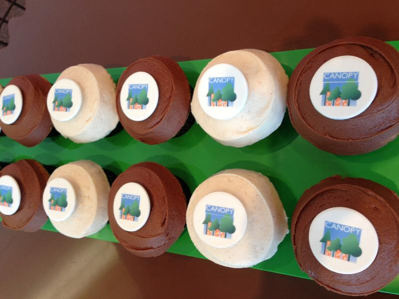 sprinkles canopy cupcakes 2