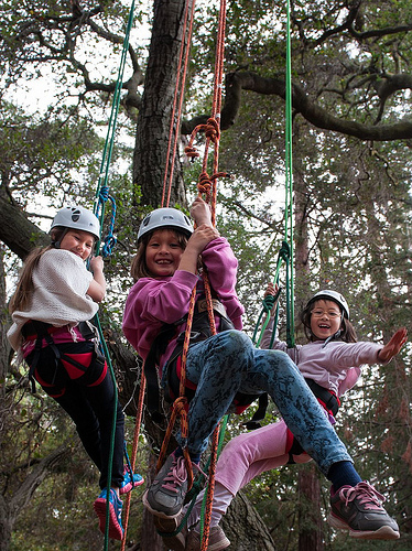 Girls climbing trees