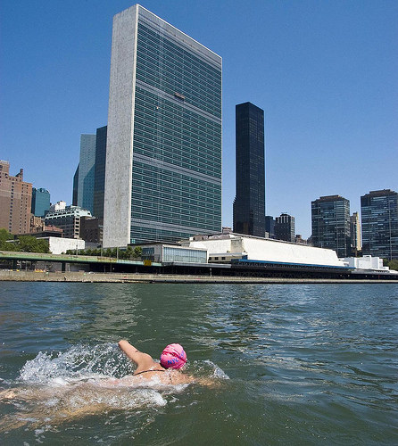 Swim Around Manhattan
