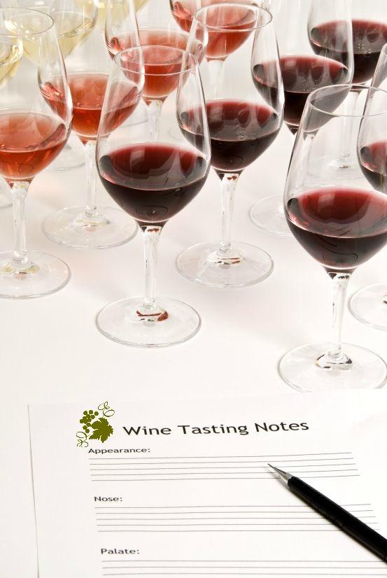 vertical wine tasting
