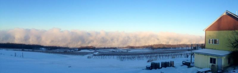 Seneca Lake's micro climate protects our vineyards.