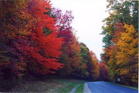 Fall scenery road trip
