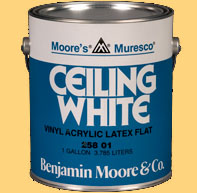 Ceiling Paint Can