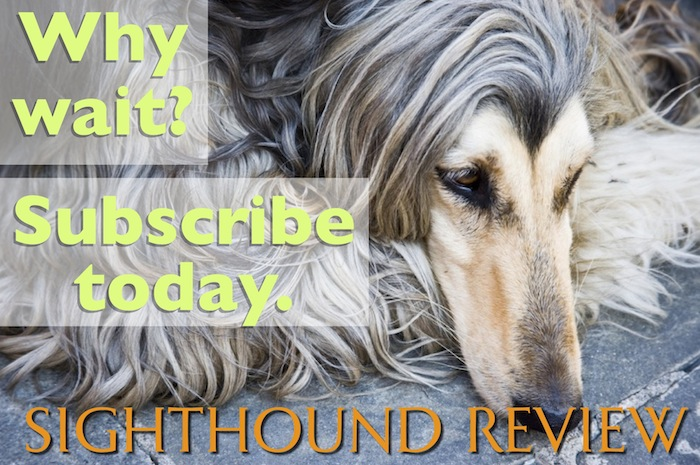 The latest SIGHTHOUND REVIEW is right around the corner!