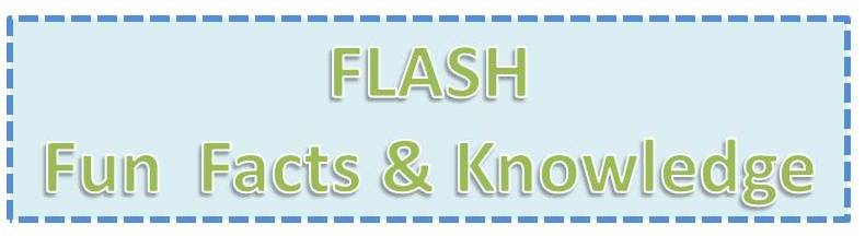 Flash fun facts and knowledge