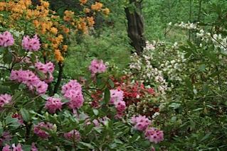 Jackson County Park
