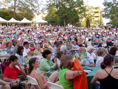 Concerts by the Springs