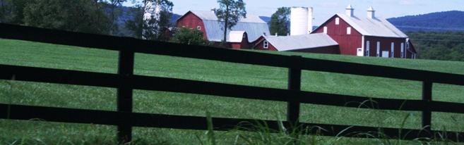 Loudoun fence