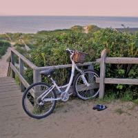 Bike at Steps Beach