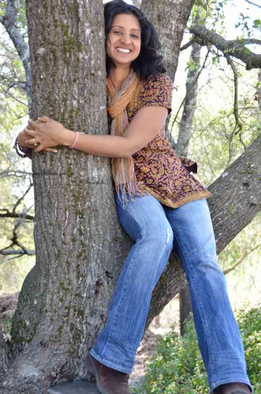 Gangotri in tree
