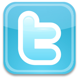 Polyvinyl Twitter