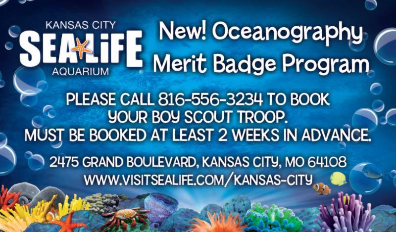 sea life ad
