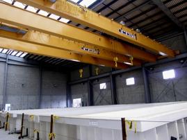 Galvanizing Cranes