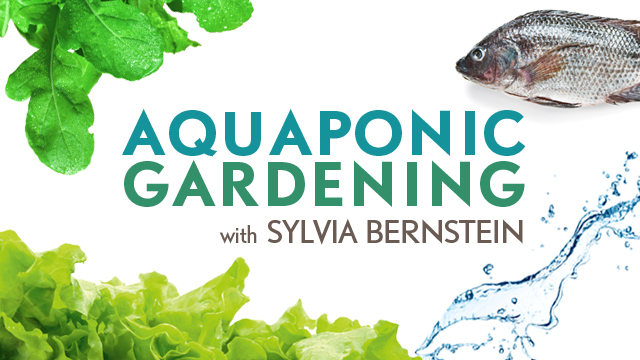 Aquaponic Gardening Course