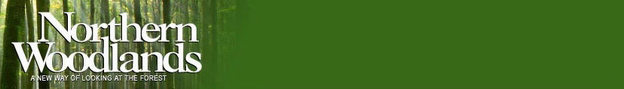 CNWE Green Header Image Bar