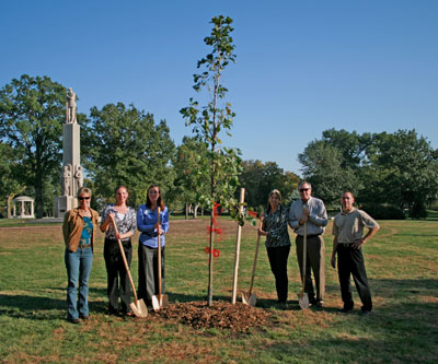 Legacy Tree Grove