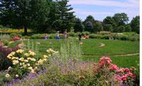 Strolling Garden